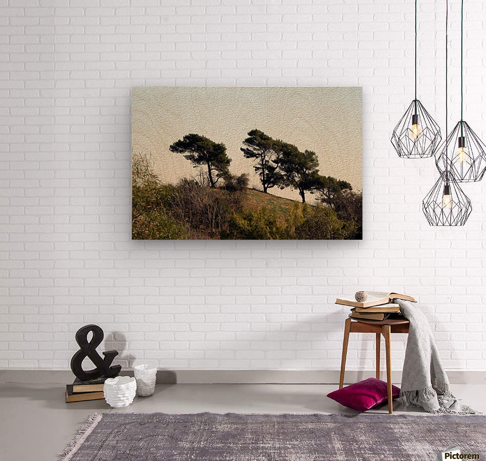 Natural Wind Blown Trees  Wood print