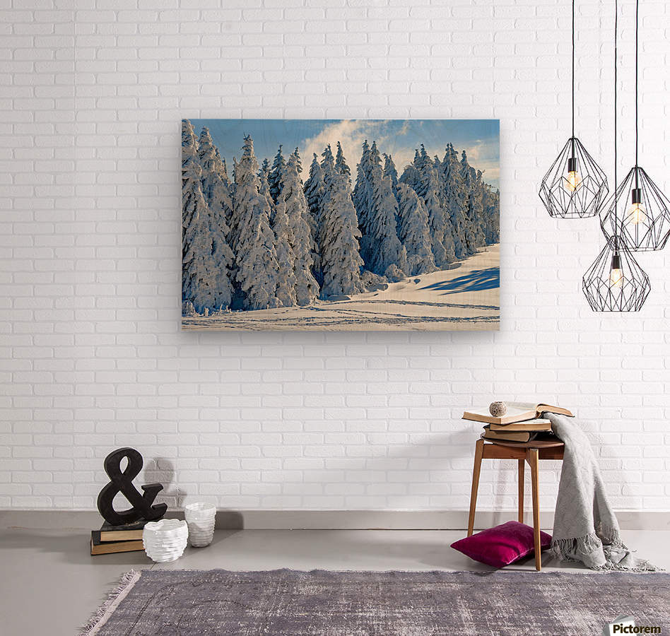 Snow  Crusted Trees Rocky Mountains  Wood print