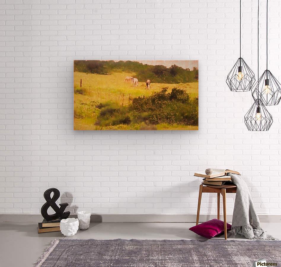 Sharon Park 8  Wood print