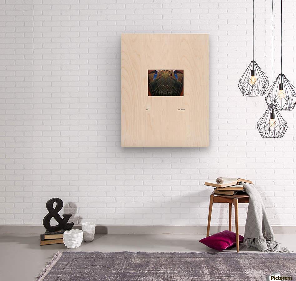 BLUEPHOTOSFORSALE 032  Wood print