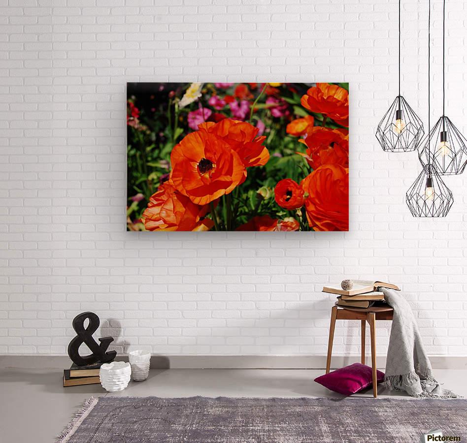 Garden with Orange Flowers Growing  Wood print