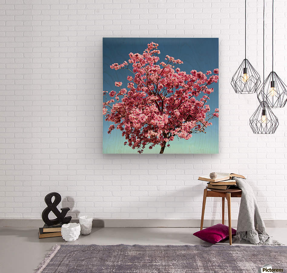 Cherry Blossom on Blue  Wood print