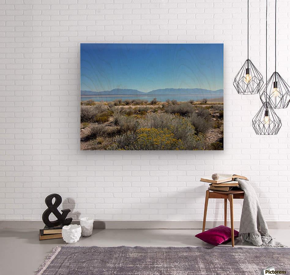 Salt Lake Vista  Wood print
