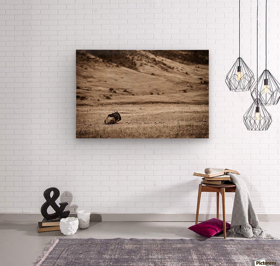 La solitude du gnou  Wood print