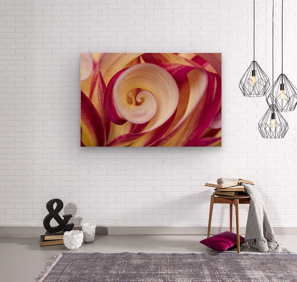 Spirales  Wood print