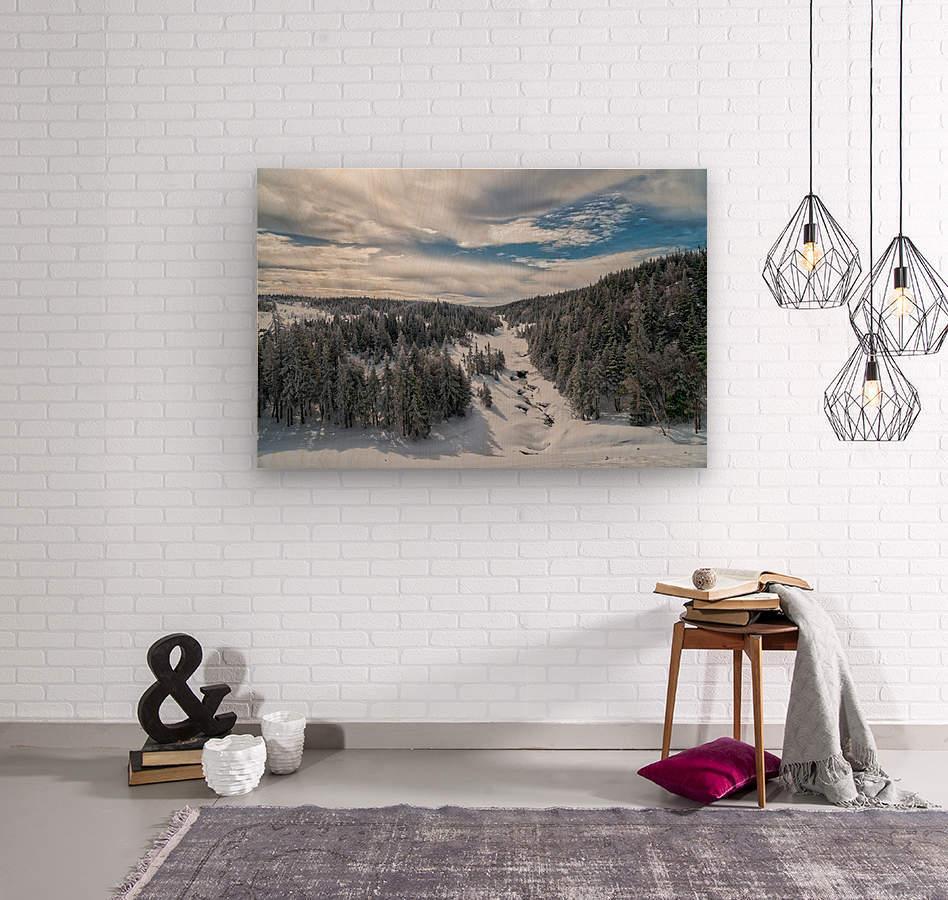 A Boreal Winter  Wood print