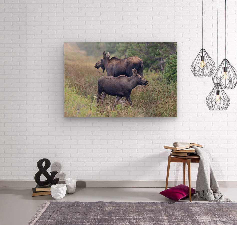Mom and Calf Moose  Wood print