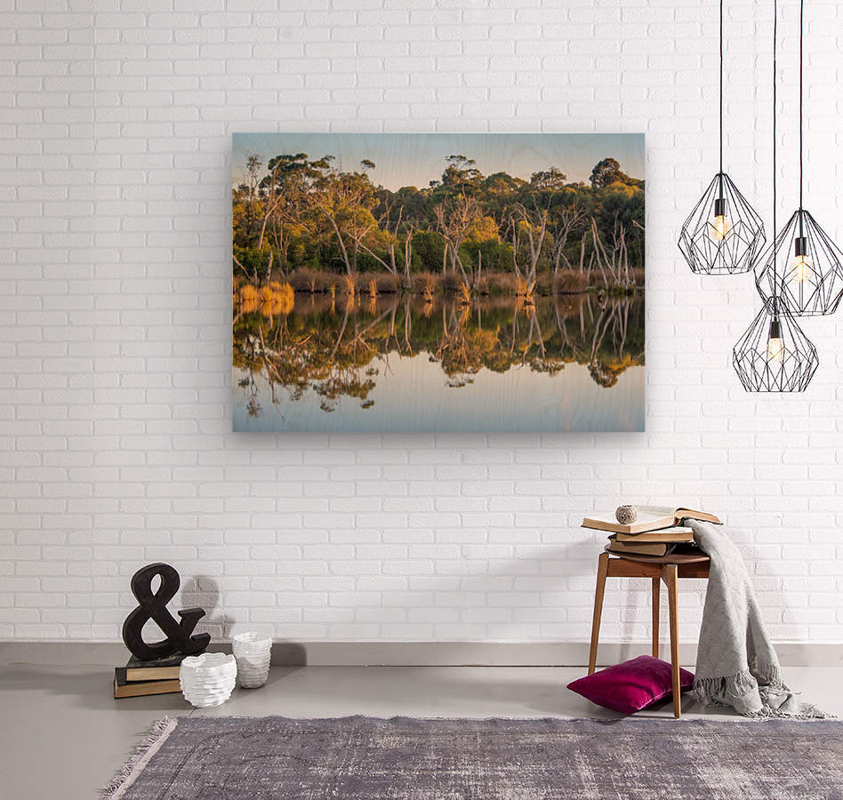 Evening river bank with glassy reflection  Wood print