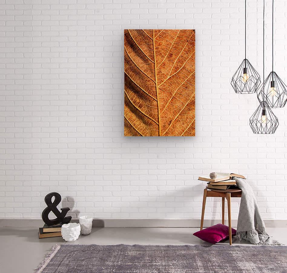 DSC_8712  Wood print