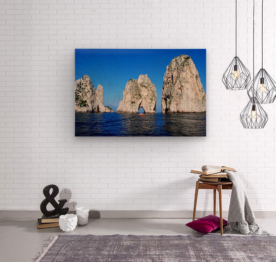 Three Sirens  Wood print