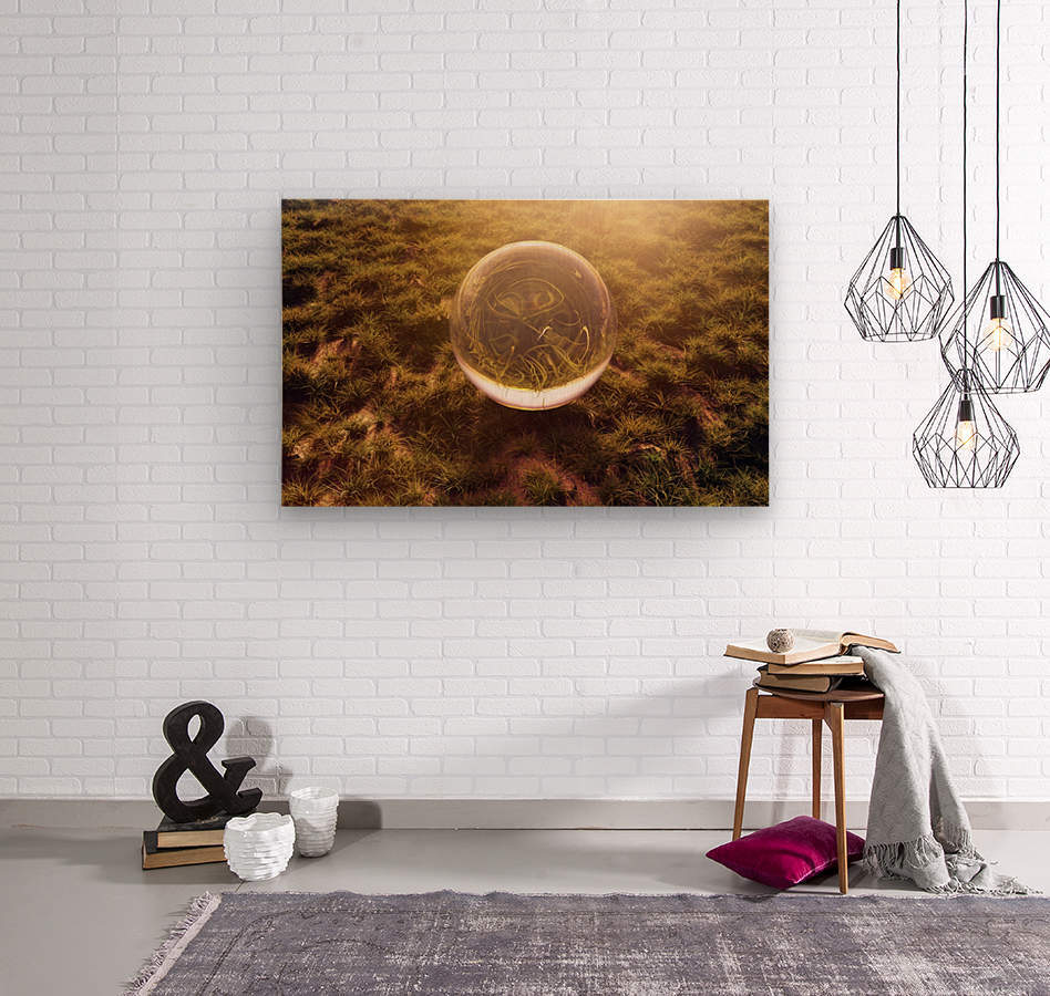 crystal ball on green grass in the morning sunshine light  Wood print