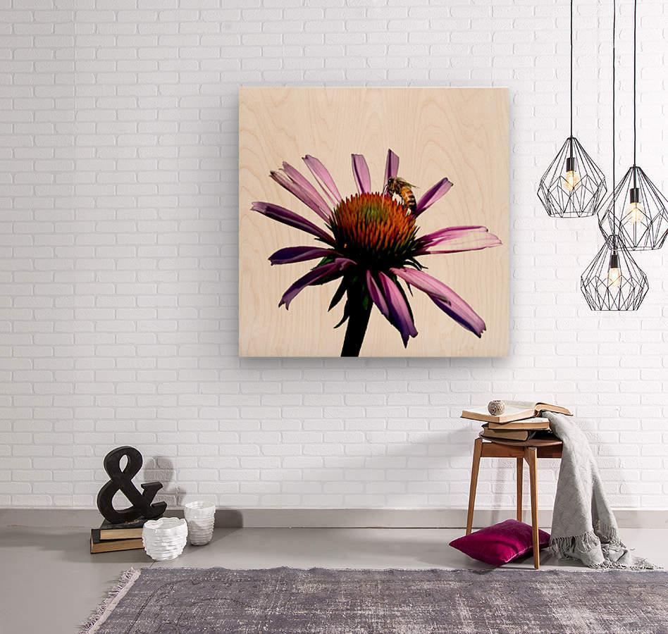 Daisy Bee  Wood print