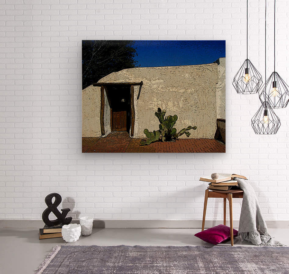 Cactus & Door  Wood print