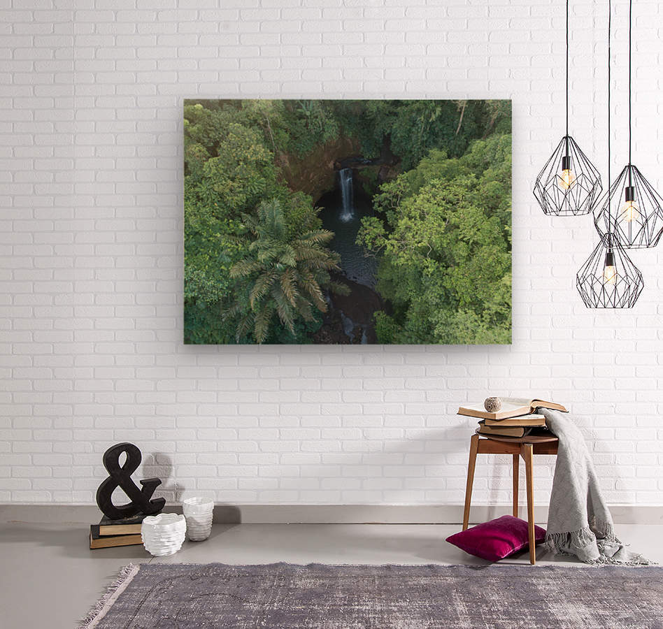 Tibumana waterfall - Bali  Wood print