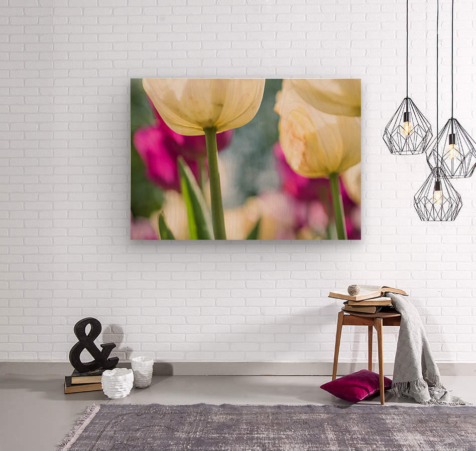 Under The Tulips - Sous Les Tulipes  Wood print