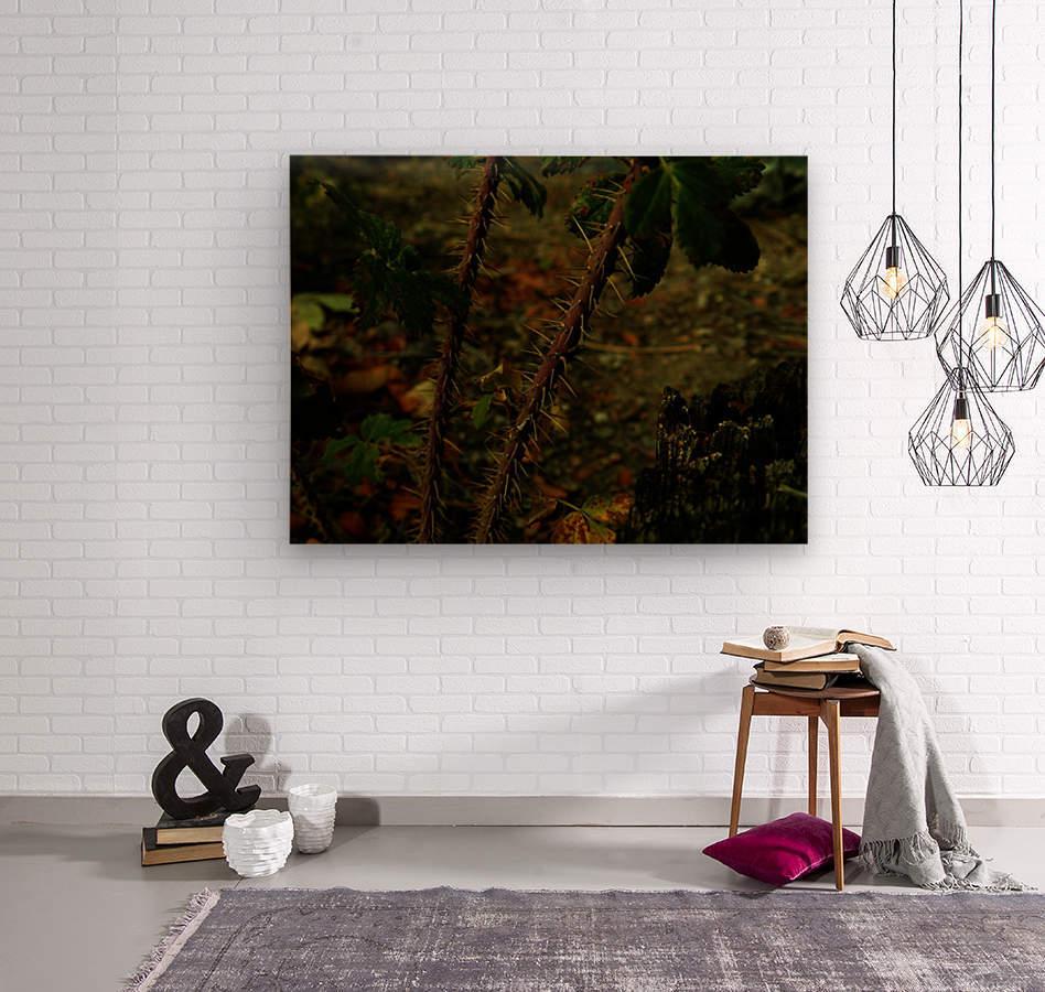 sofn-163F956E  Wood print