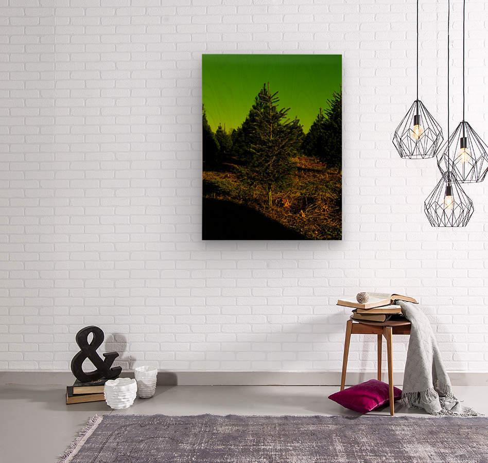 F (6)  Wood print