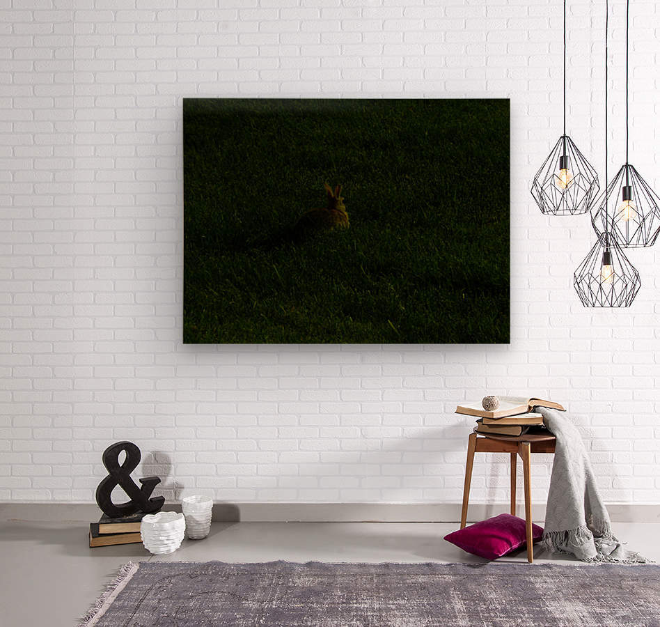 sofn-7397E3E2  Wood print
