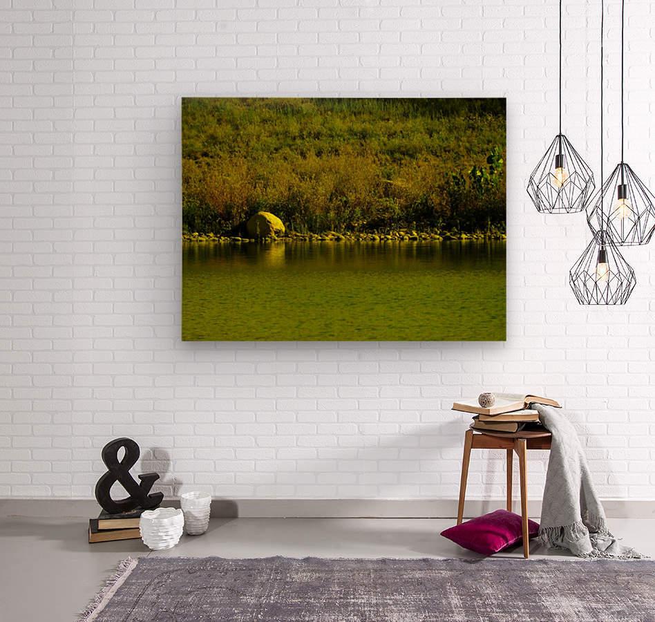 sofn-23FF155D  Wood print