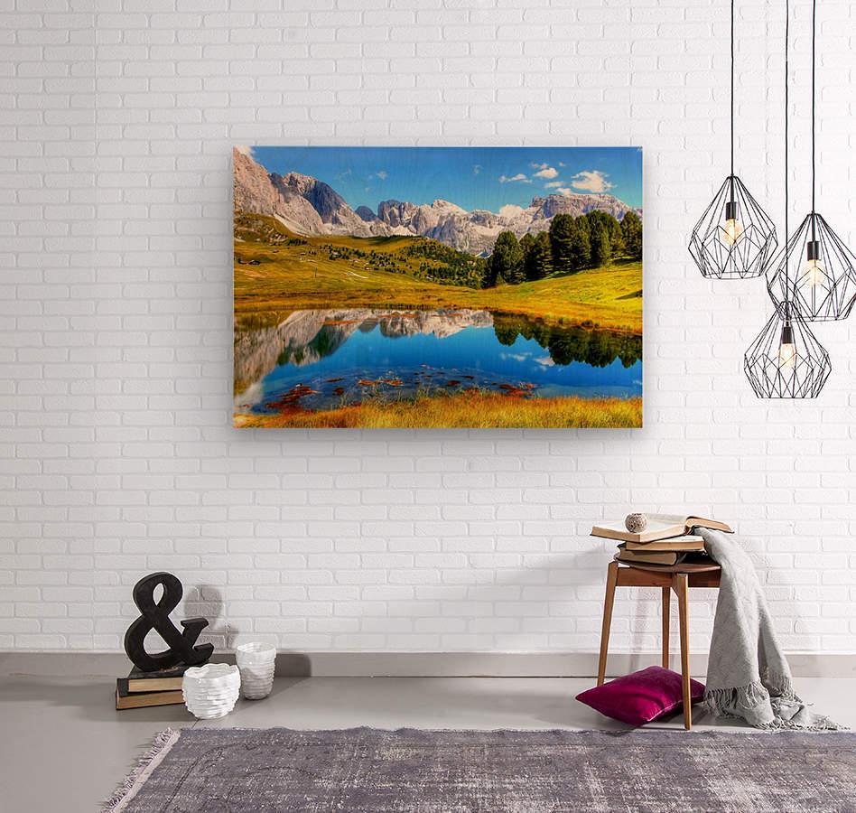 Italy DL_2179641  Wood print