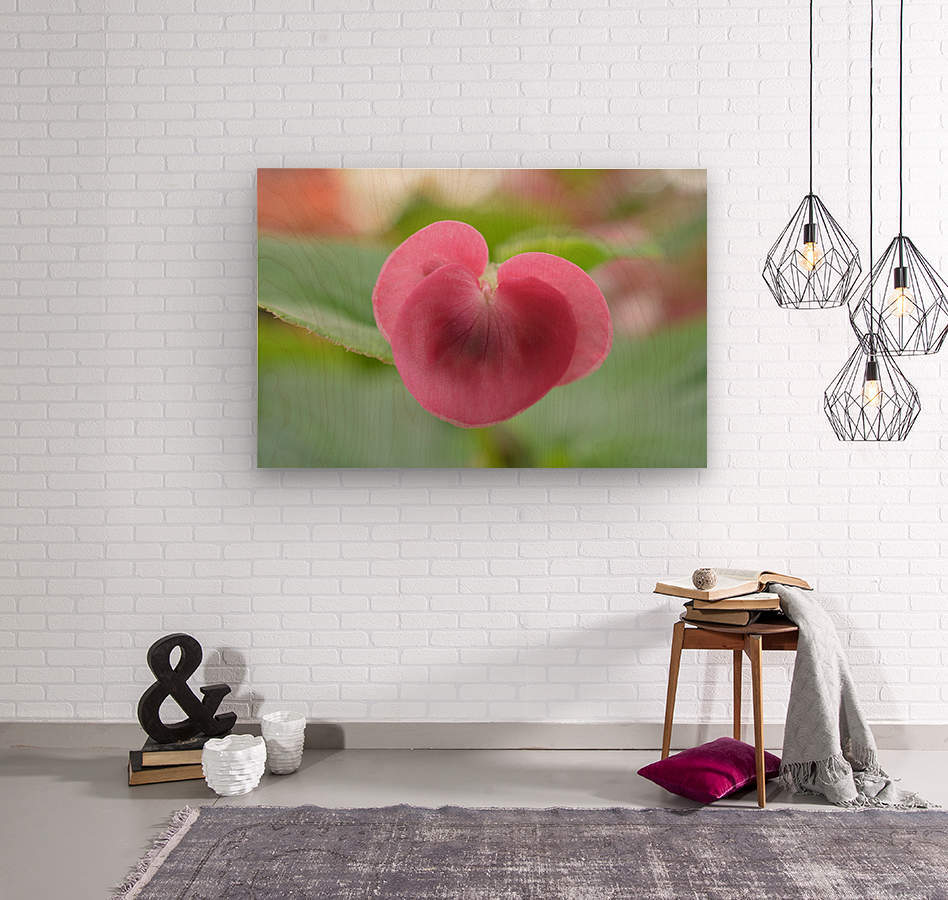 Heart Shape Pink Flower Photograph  Wood print