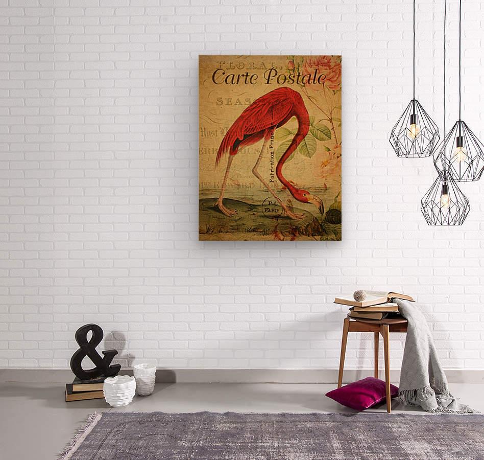 Beautiful Flamingo_OSG  Wood print
