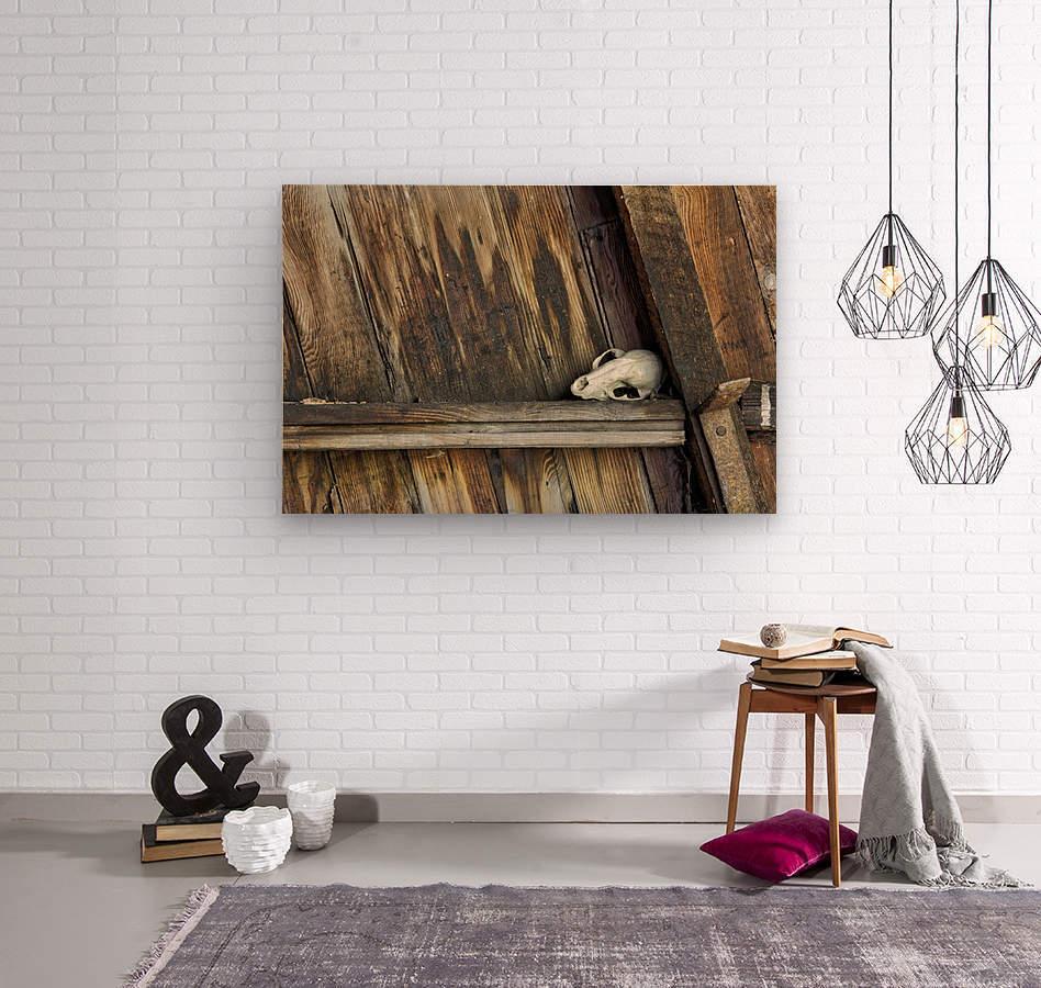 Bone and Wood  Wood print