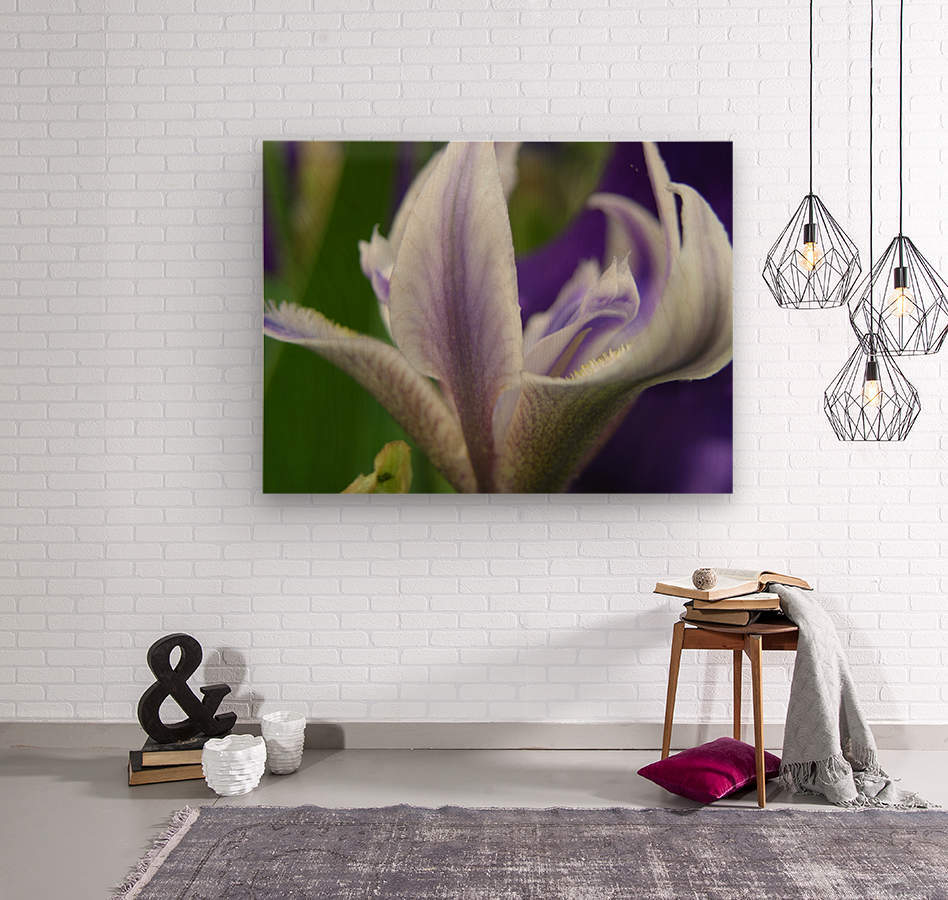 Purple Flower Photography  Wood print