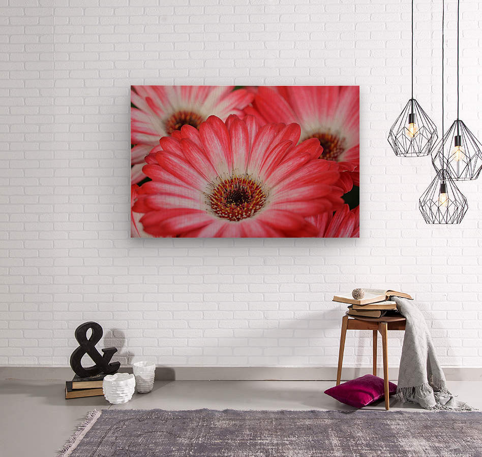 Red & White Flower Photograph  Wood print