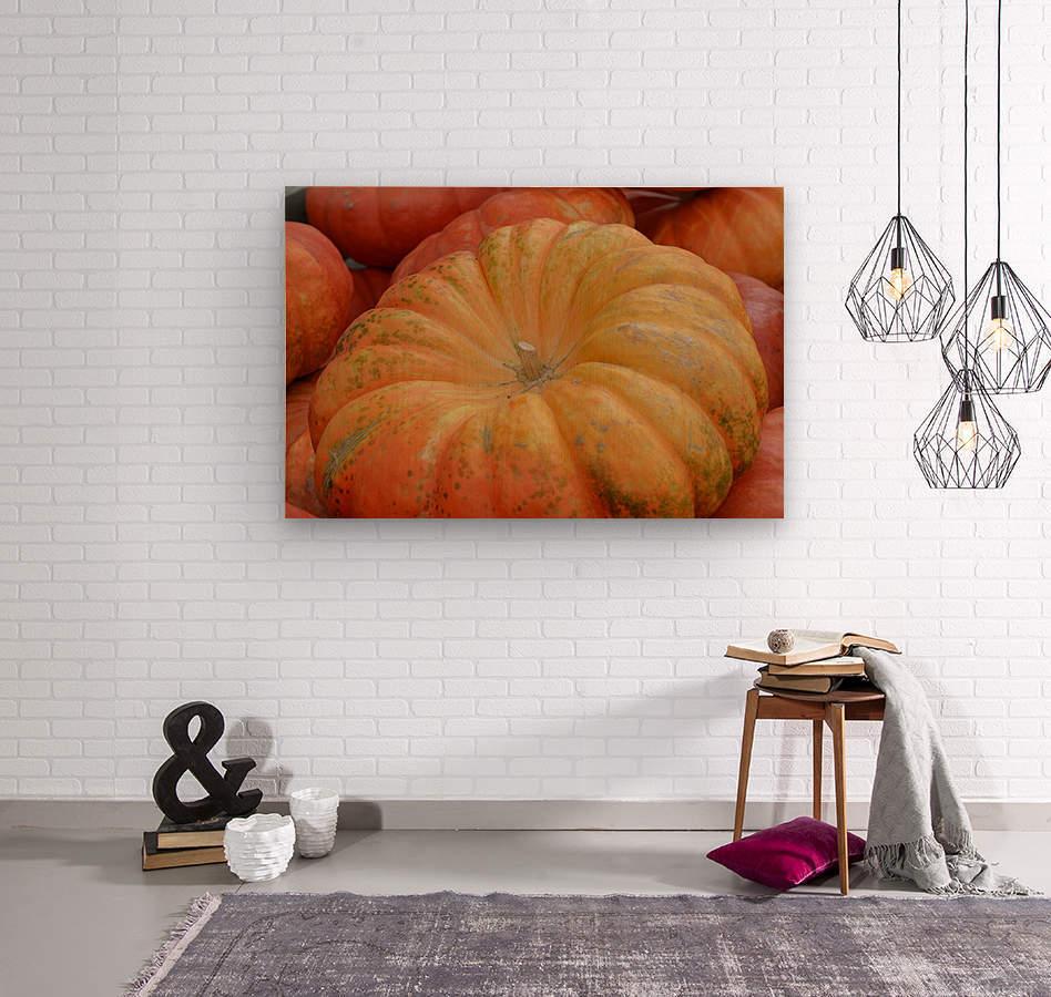 Beautiful Pumpkins Photograph  Wood print