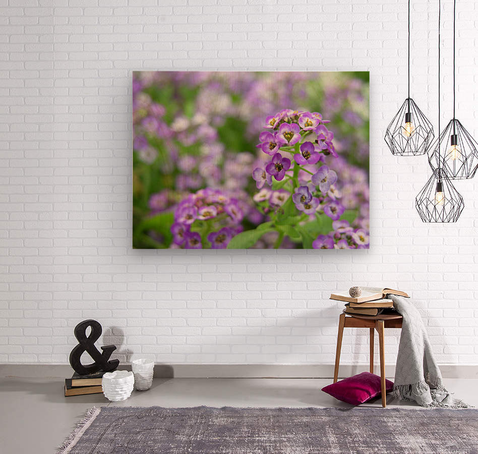 Beautiful Small Purple Flowers Photograph  Wood print