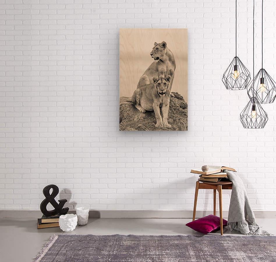 Mothers  Wood print