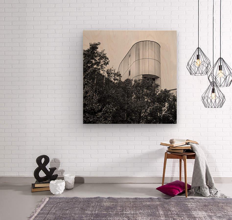 Winston Salem 88  Wood print