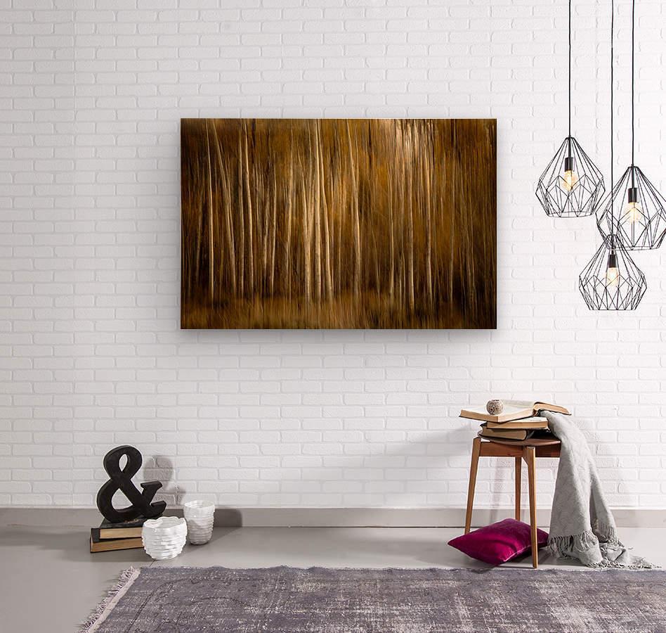 2S9A2743  Wood print