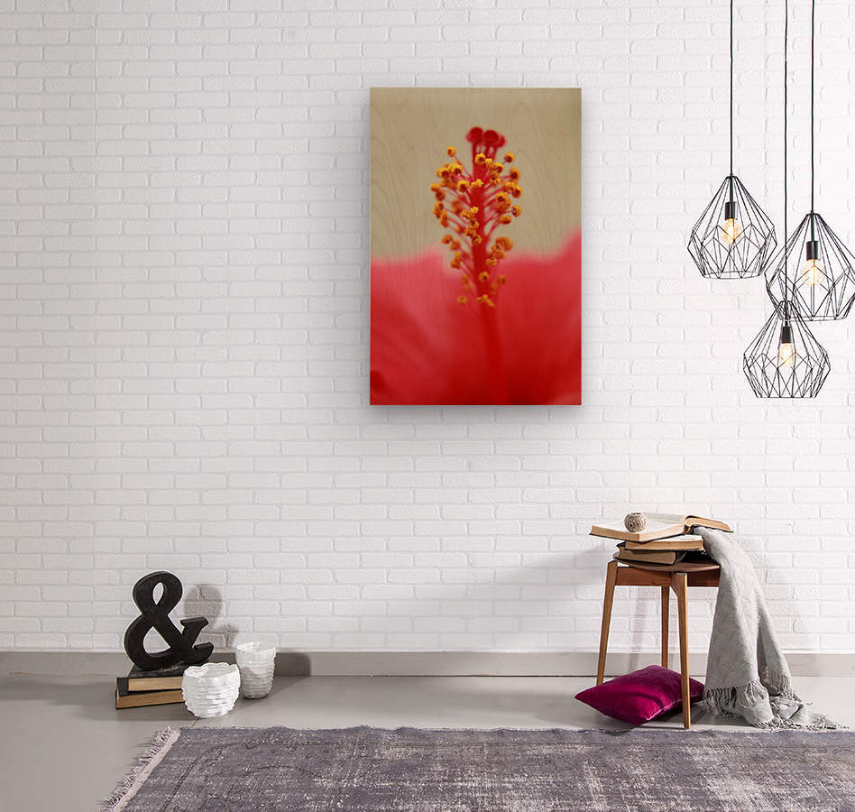 Hibiscus detail  Wood print