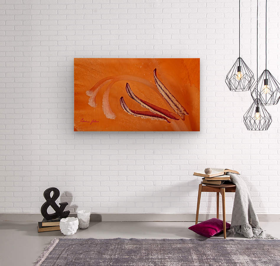Orange Gladiola Ultra Close Up of Stamens  Wood print