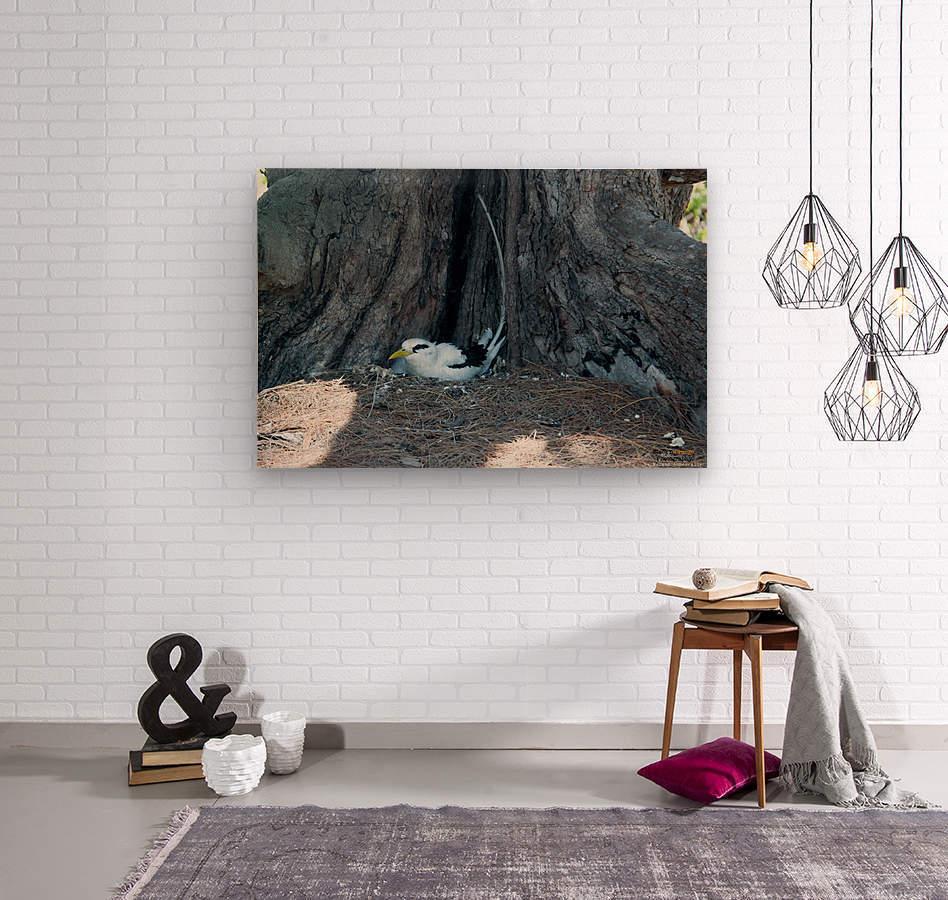 1 90  Wood print