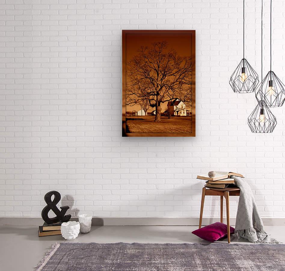 Magnificent Tree  Impression sur bois