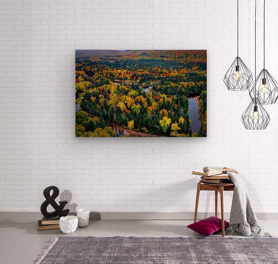 Tremblant  Wood print