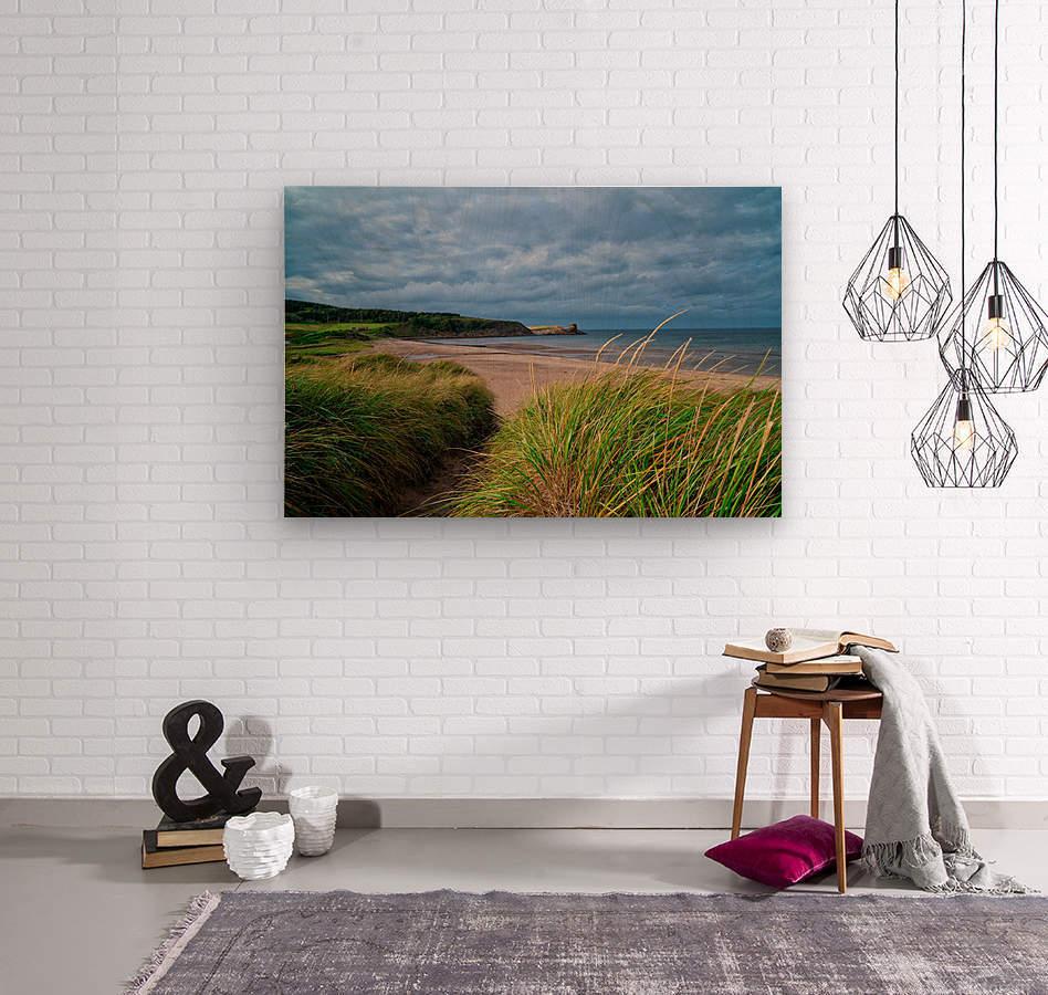 Sand and Grass  Wood print