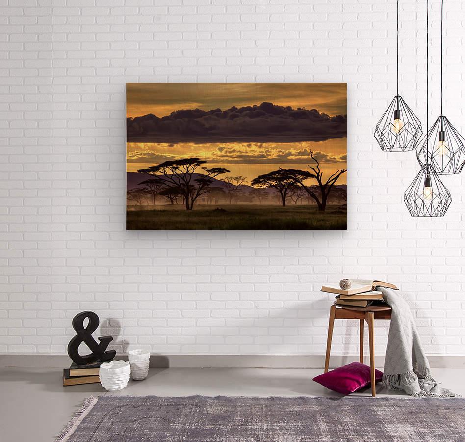 Good evening tanazania  Wood print