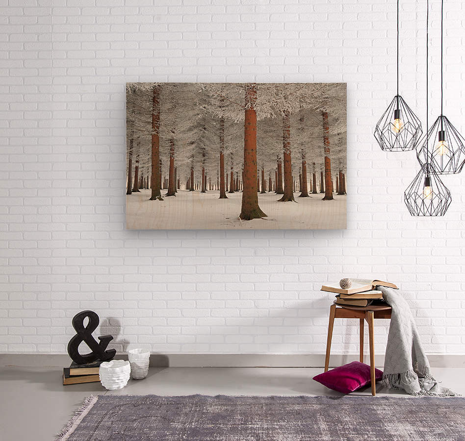 magical forest  Wood print