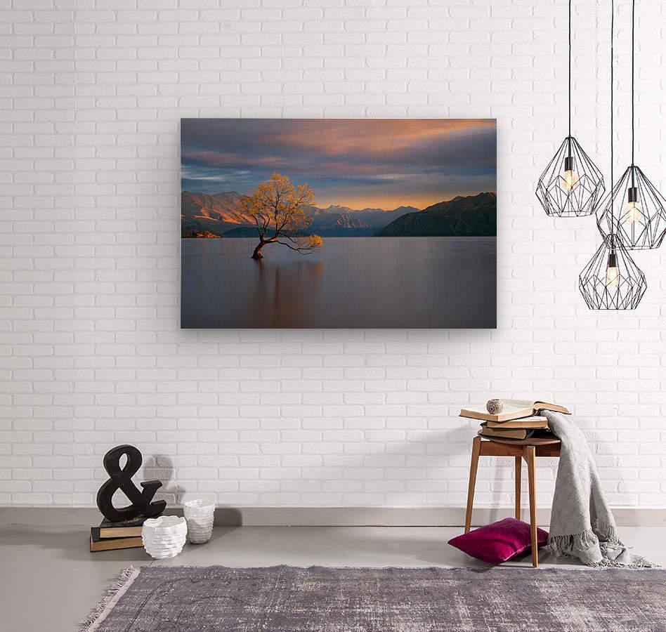 Morning Glow  Wood print