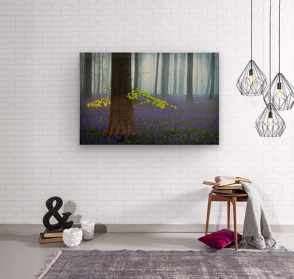 Spring...........  Wood print