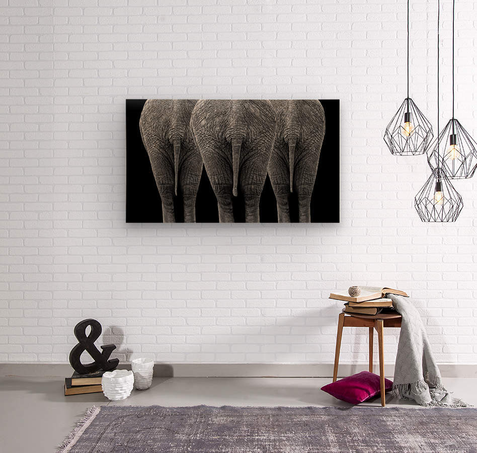 The Elephants  Wood print