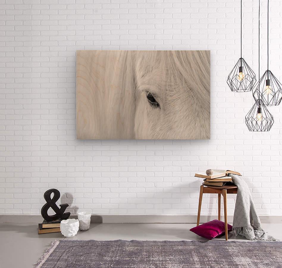 Whisper of Iceland  Wood print