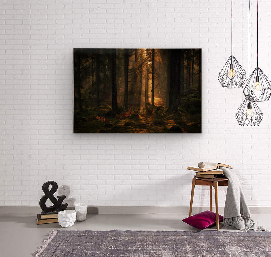 The light in the forest  Wood print