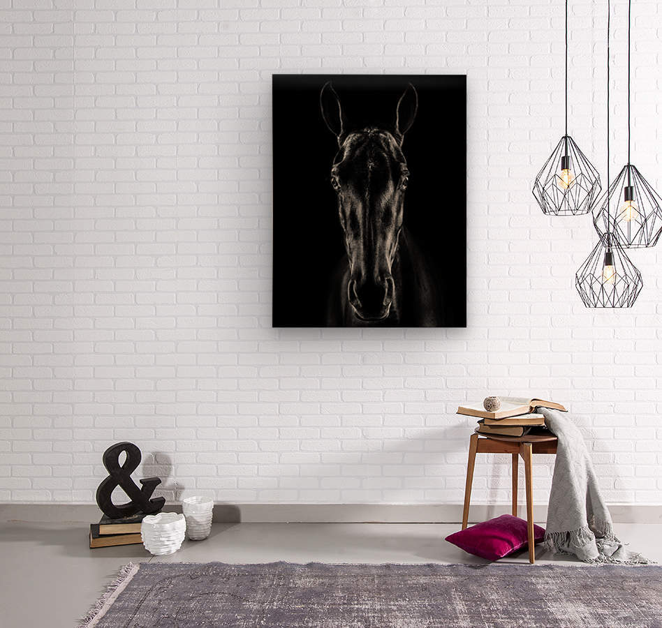 The Horse in Noir  Wood print