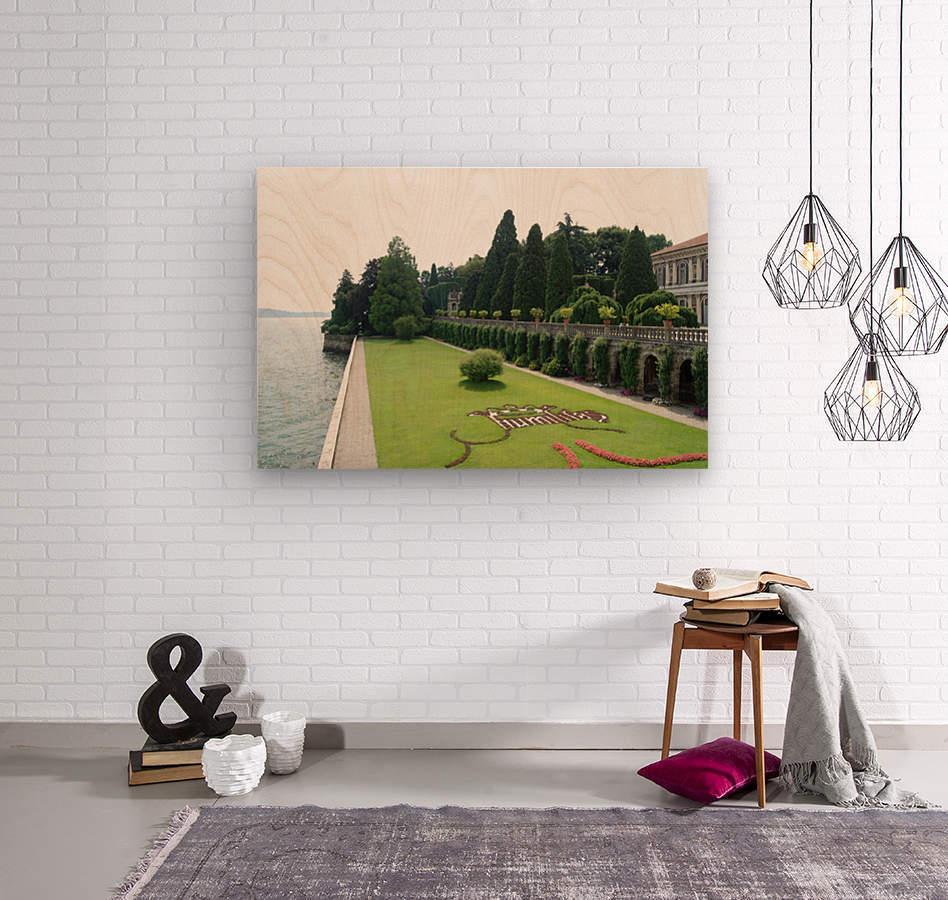 Island Lawn  Wood print