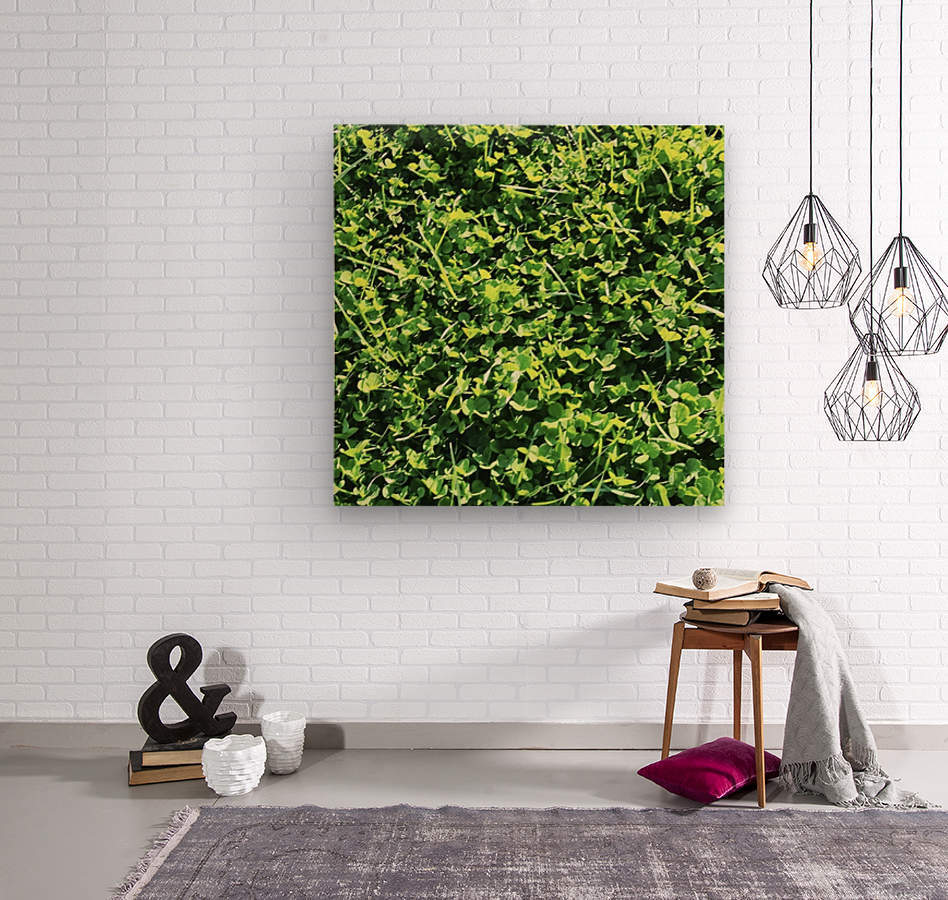 Grassy Wonderland  Wood print